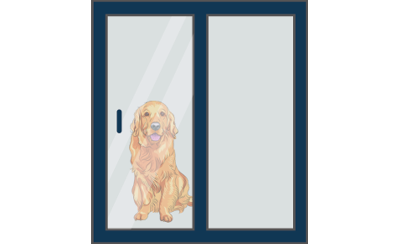 door with dog door