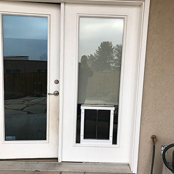 Window Dog Door